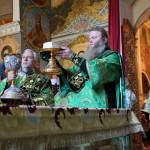 Полк воинов духовных преподобных отец собра Феодосий Богомудрый