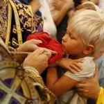 Спасительному древу поклонимся, Кресту пресвятому