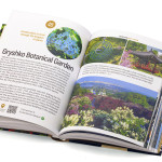 """The oldest monastery of the Kyivan Rus"": ""Interesting Kyiv"" brand new guide book"