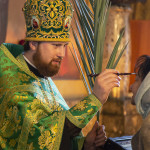 On Palm Sunday Head of UOC performed celebrations