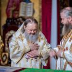Предстоятель возглавил празднование Недели Всех святых